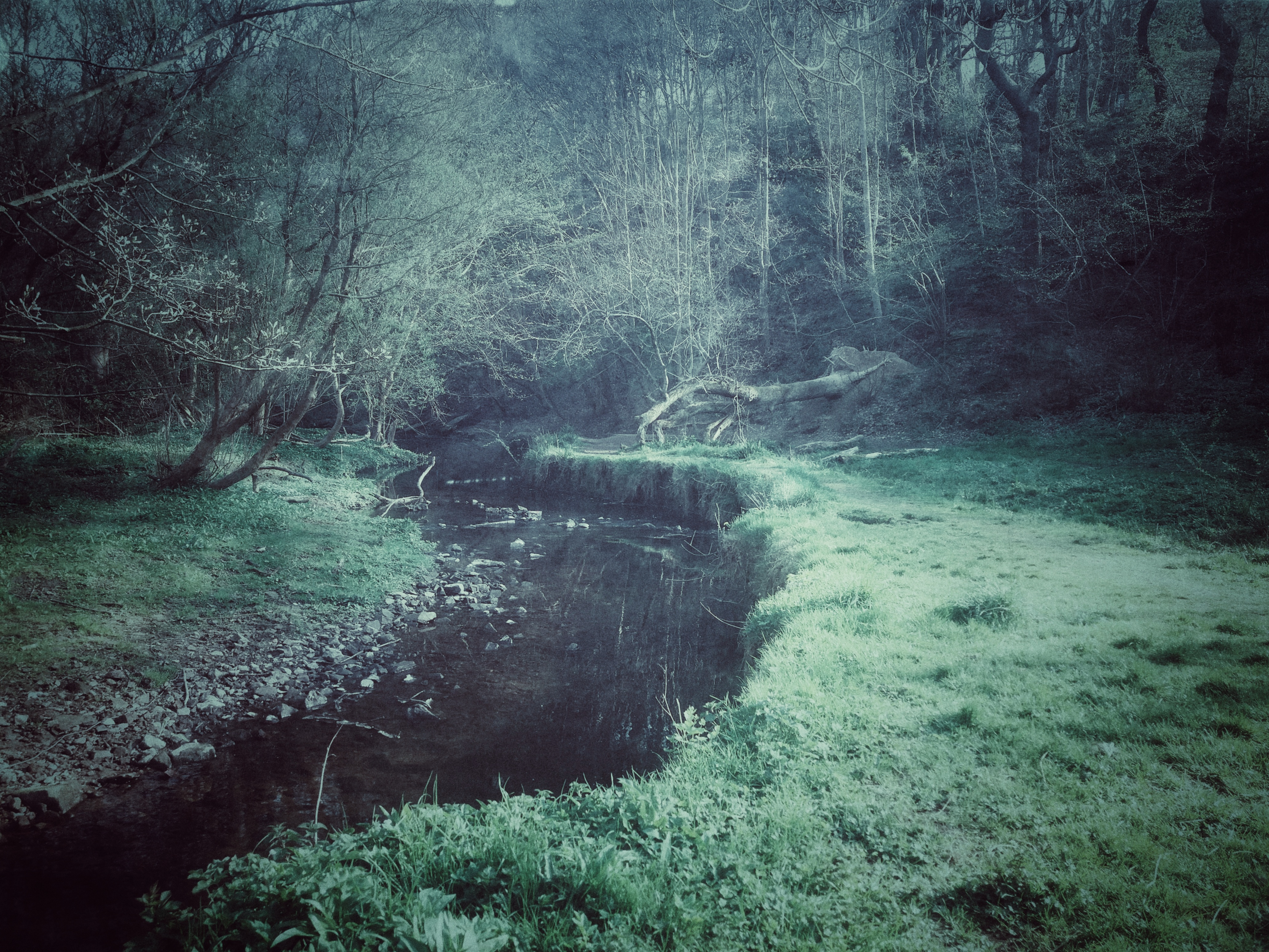 diana-marin-ethereal-eerie-photography-scenery