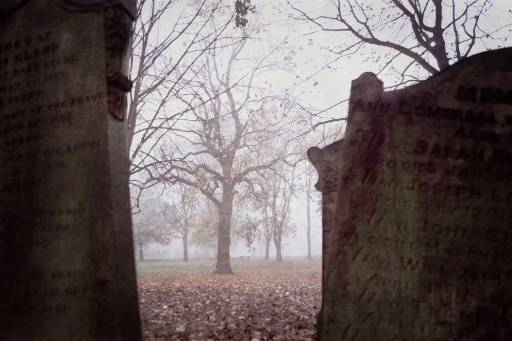 foggy-trees-graves-beautiful