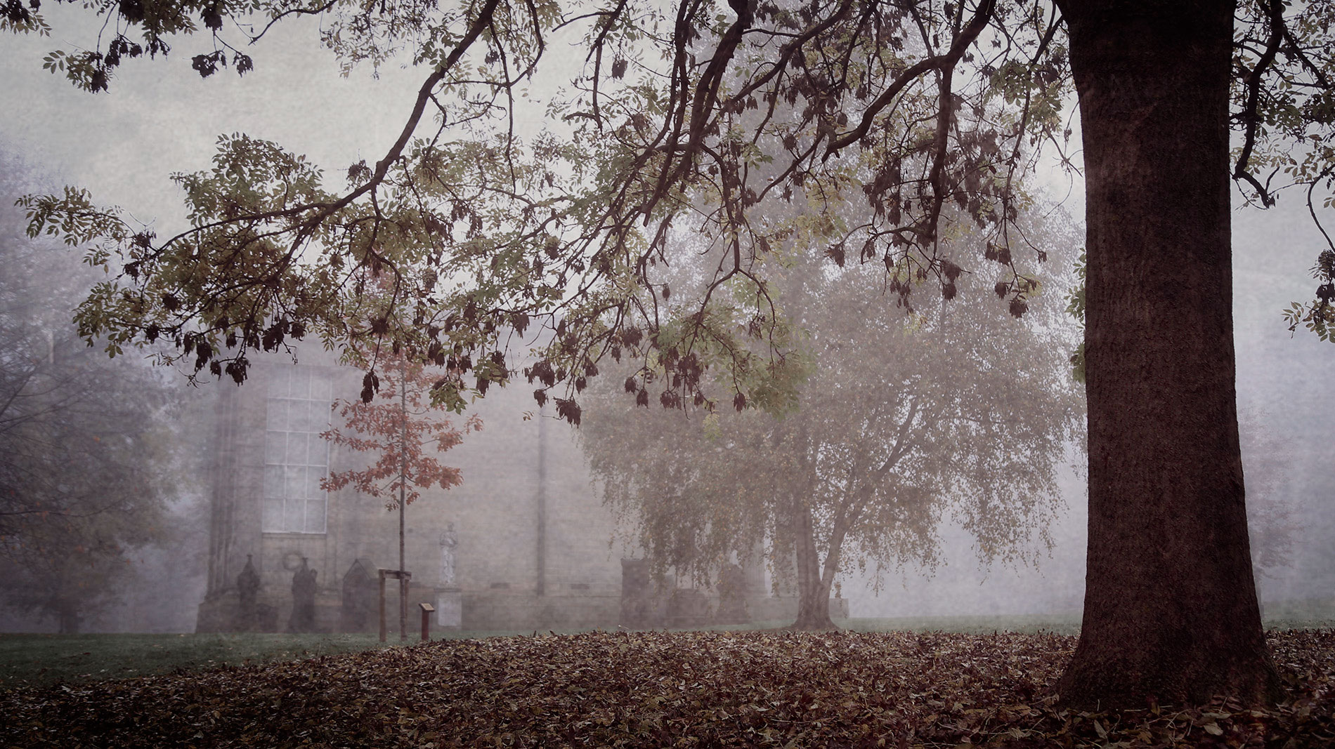leeds-cemetery-foggy-landscape-saturation