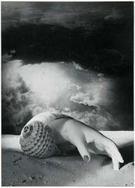 dora-maar-hand-shell-surreal-art