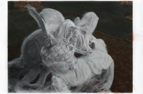 katie-eleanor-sanctuary